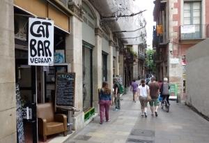 cat bar bcn