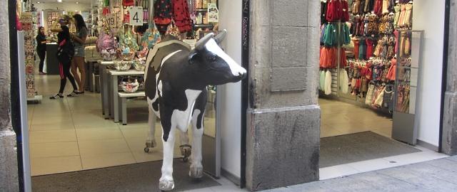 Shop Barcelona