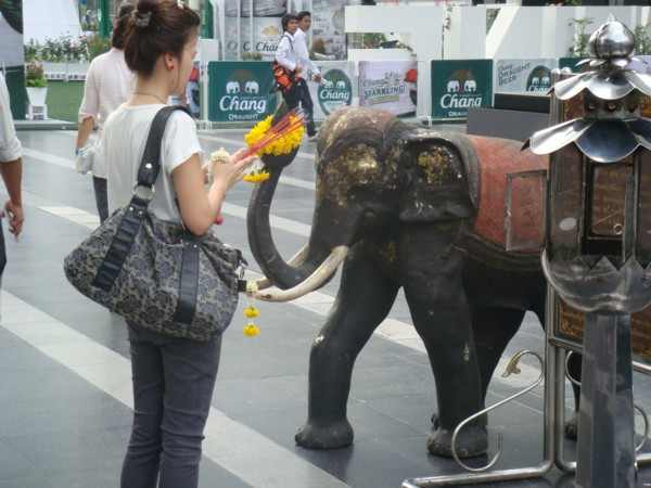 elephants bangkok