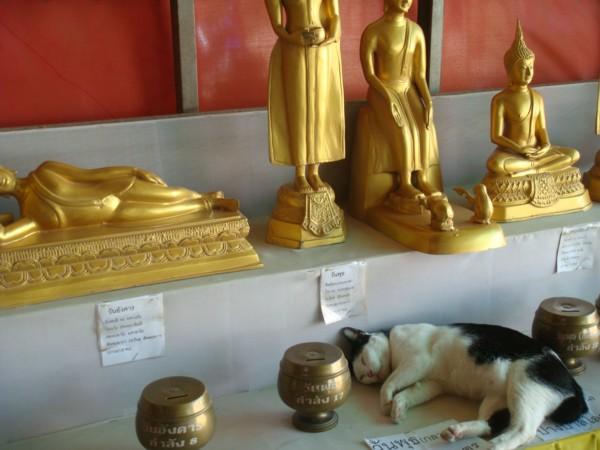 shrines bangkok