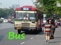 buses bkk