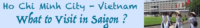 To VietVisit site